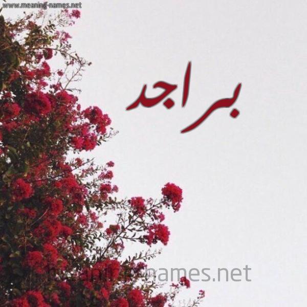 صورة اسم براجد Brajd شكل 18 صوره الورد الأحمر للإسم بخط رقعة