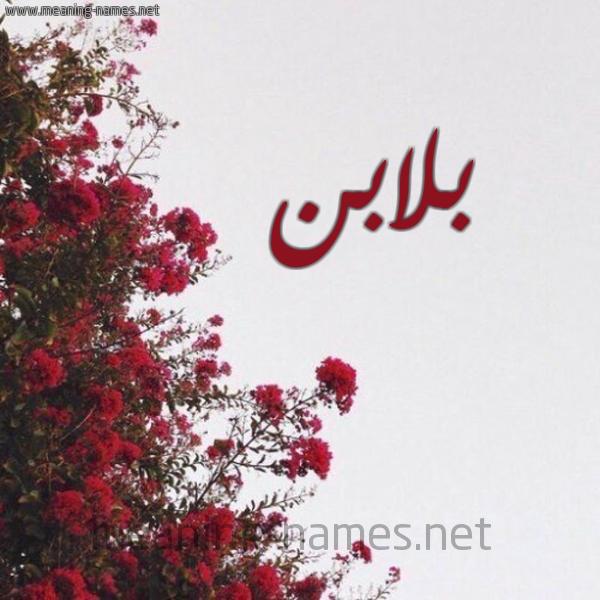 شكل 18 صوره الورد الأحمر للإسم بخط رقعة صورة اسم بلابن Blabn