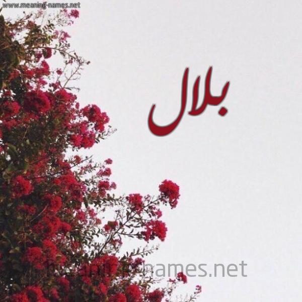 صورة اسم بلال بِلال-Blal شكل 18 صوره الورد الأحمر للإسم بخط رقعة