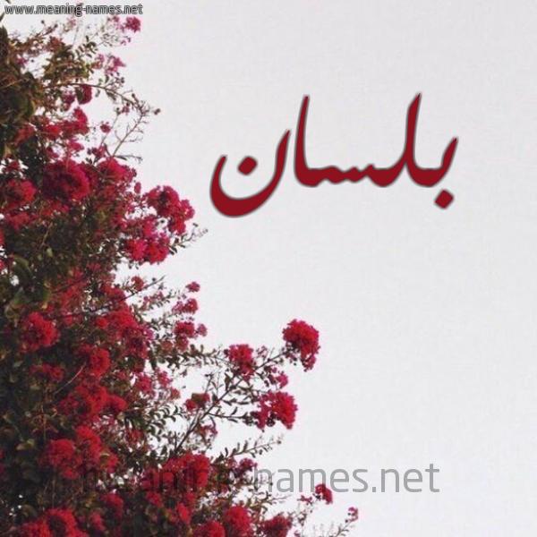 صورة اسم بلسان Blsan شكل 18 صوره الورد الأحمر للإسم بخط رقعة