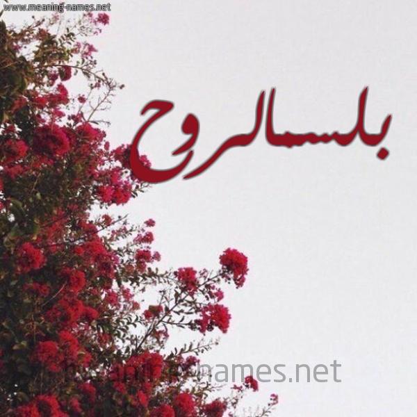 شكل 18 صوره الورد الأحمر للإسم بخط رقعة صورة اسم بلسمالروح Blsmalrwh