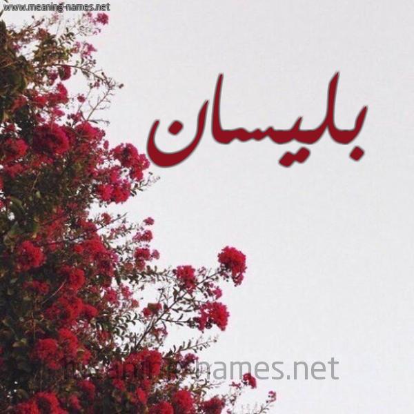شكل 18 صوره الورد الأحمر للإسم بخط رقعة صورة اسم بليسان Blisan