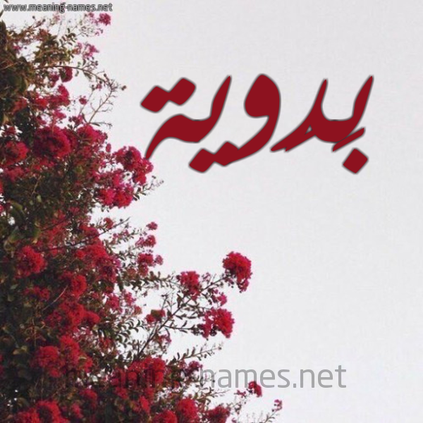 صورة اسم بَدَوية BADAOIH شكل 18 صوره الورد الأحمر للإسم بخط رقعة
