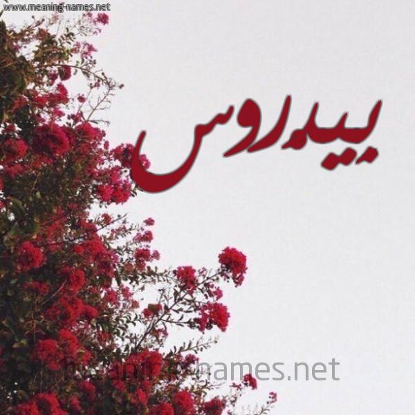 صورة اسم بِيدْروس BEIDROS شكل 18 صوره الورد الأحمر للإسم بخط رقعة