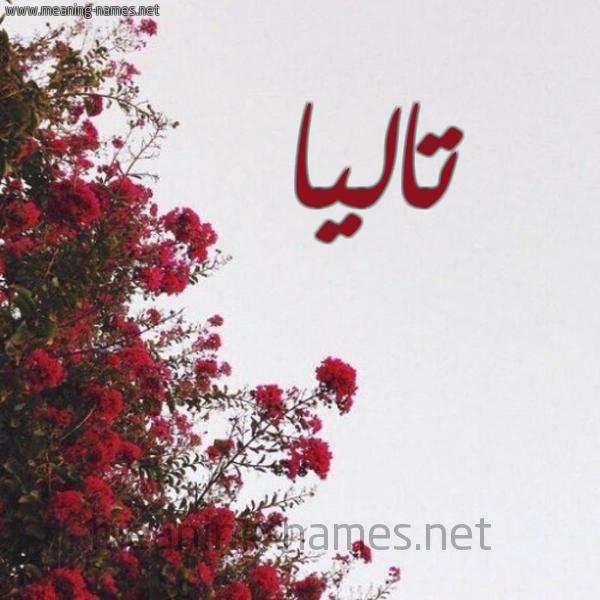 شكل 18 صوره الورد الأحمر للإسم بخط رقعة صورة اسم تاليا Talia
