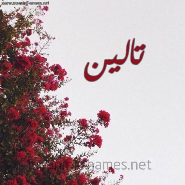 صورة اسم تالين Talin شكل 18 صوره الورد الأحمر للإسم بخط رقعة