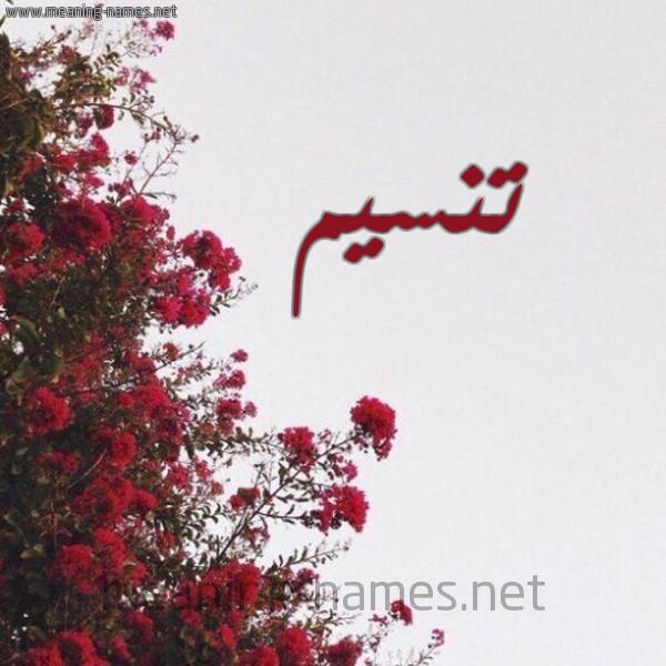 شكل 18 صوره الورد الأحمر للإسم بخط رقعة صورة اسم تنسيم Tasnim