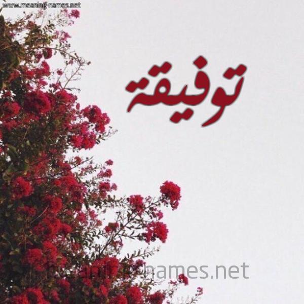 شكل 18 صوره الورد الأحمر للإسم بخط رقعة صورة اسم توفيقة TOFIQH