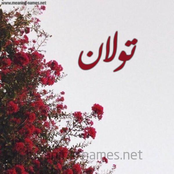 صورة اسم تولان Tolan شكل 18 صوره الورد الأحمر للإسم بخط رقعة