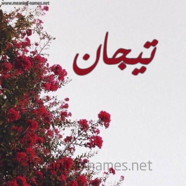 صورة اسم تيجان Tyjan شكل 18 صوره الورد الأحمر للإسم بخط رقعة