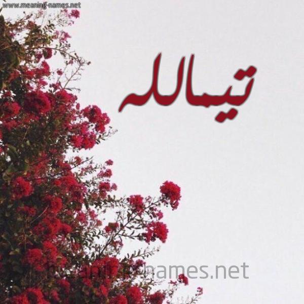 صورة اسم تيمالله Tymallh شكل 18 صوره الورد الأحمر للإسم بخط رقعة