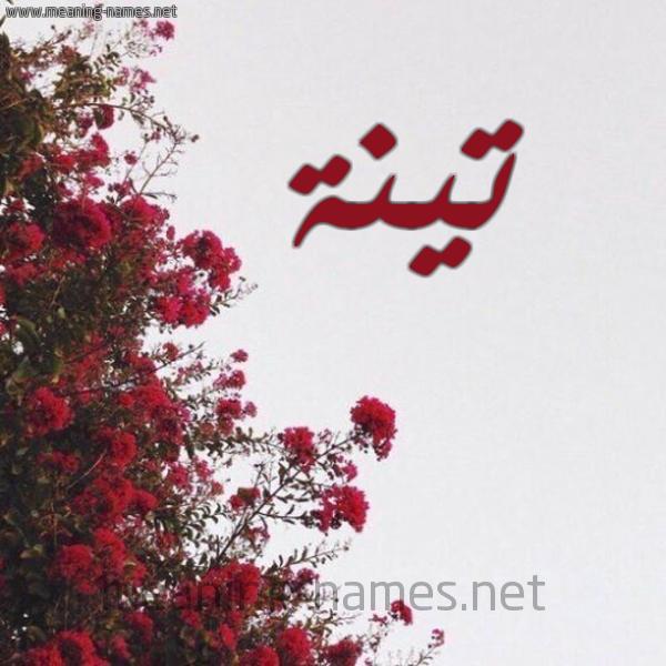 صورة اسم تينة Tynh شكل 18 صوره الورد الأحمر للإسم بخط رقعة