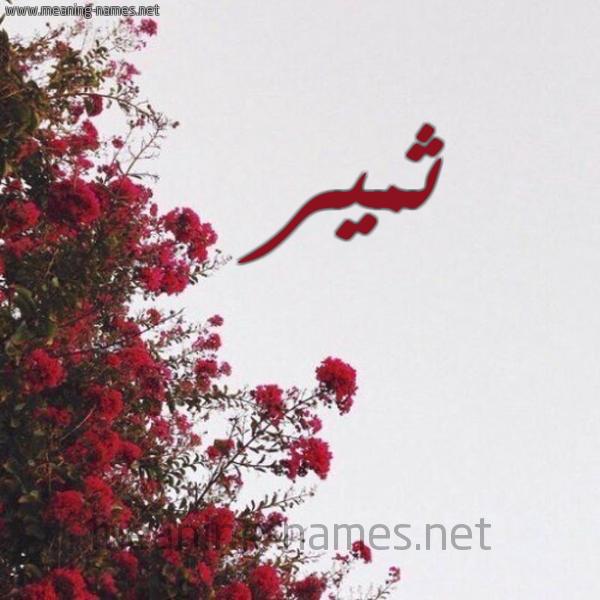 صورة اسم ثمير Thmyr شكل 18 صوره الورد الأحمر للإسم بخط رقعة