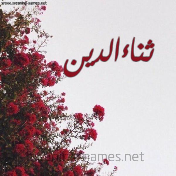 صورة اسم ثناءالدين Thna'aaldyn شكل 18 صوره الورد الأحمر للإسم بخط رقعة