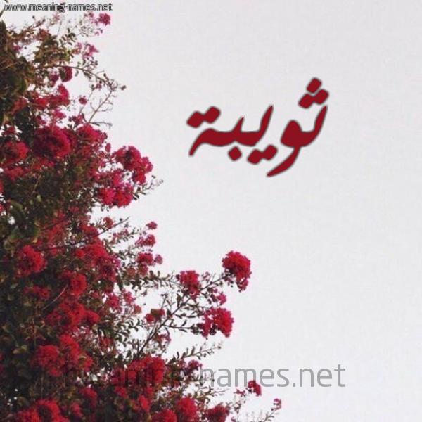 صورة اسم ثويبة Thwybh شكل 18 صوره الورد الأحمر للإسم بخط رقعة