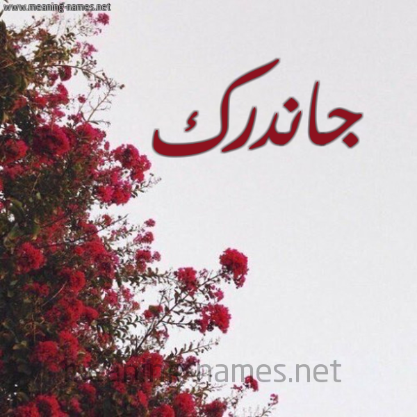صورة اسم جاندرك GANDRK شكل 18 صوره الورد الأحمر للإسم بخط رقعة