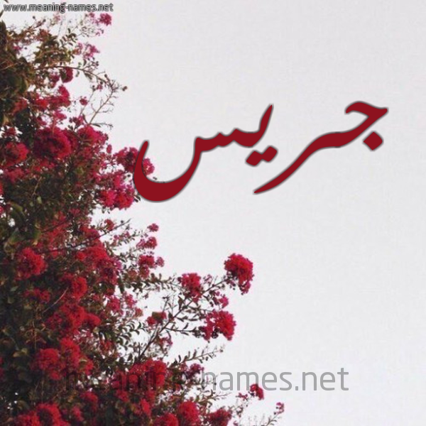 صورة اسم جريس Gres شكل 18 صوره الورد الأحمر للإسم بخط رقعة