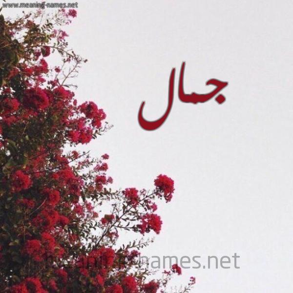 صورة اسم جمال Jmal شكل 18 صوره الورد الأحمر للإسم بخط رقعة