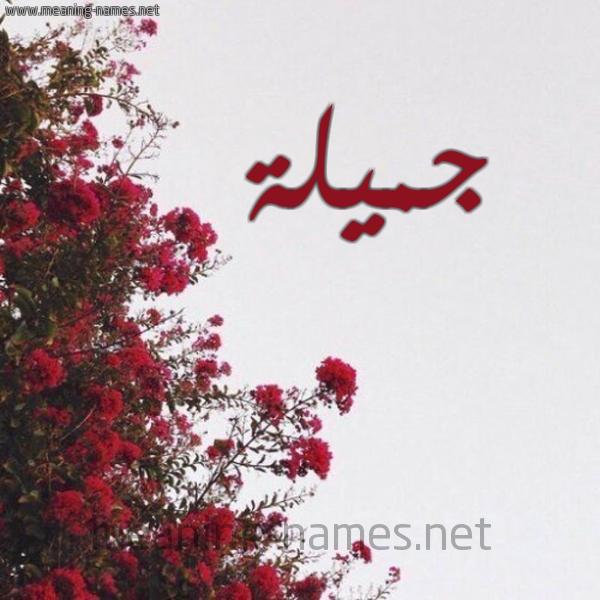 صورة اسم جميلة Jmylh شكل 18 صوره الورد الأحمر للإسم بخط رقعة