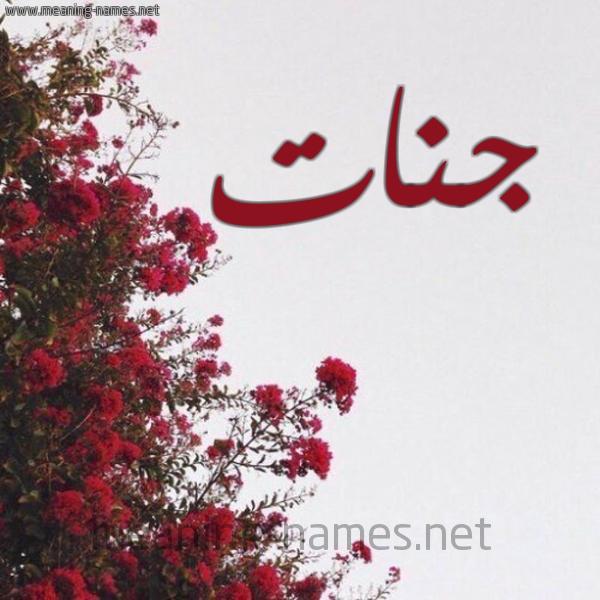 صورة اسم جنات Jannat شكل 18 صوره الورد الأحمر للإسم بخط رقعة