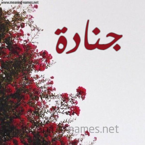 صورة اسم جنادة GNADH شكل 18 صوره الورد الأحمر للإسم بخط رقعة