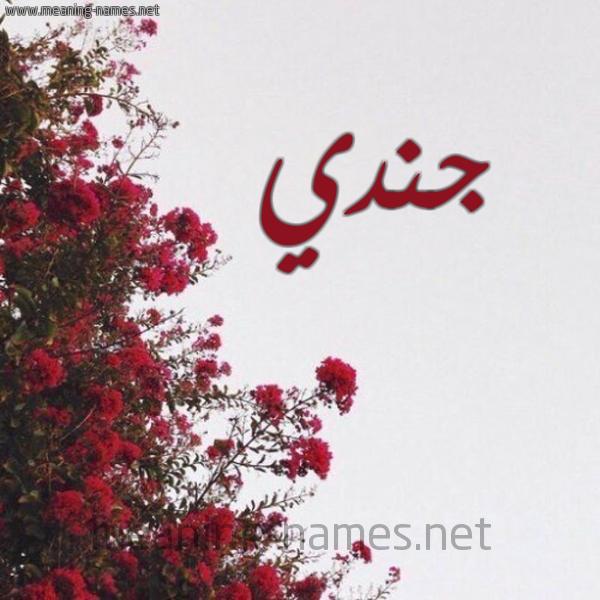 صورة اسم جندي Jndy شكل 18 صوره الورد الأحمر للإسم بخط رقعة