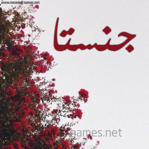 صورة اسم جنستا Jnsta شكل 18 صوره الورد الأحمر للإسم بخط رقعة