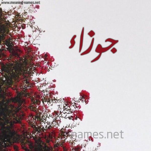 جوزاء شكل 18 صوره الورد الأحمر للإسم بخط رقعة كتابة على الورد 2021