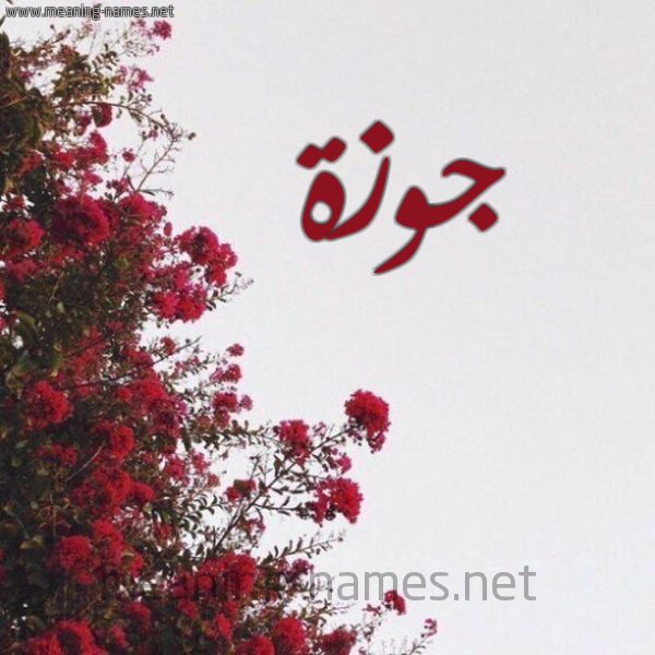صورة اسم جوزة Jwzh شكل 18 صوره الورد الأحمر للإسم بخط رقعة