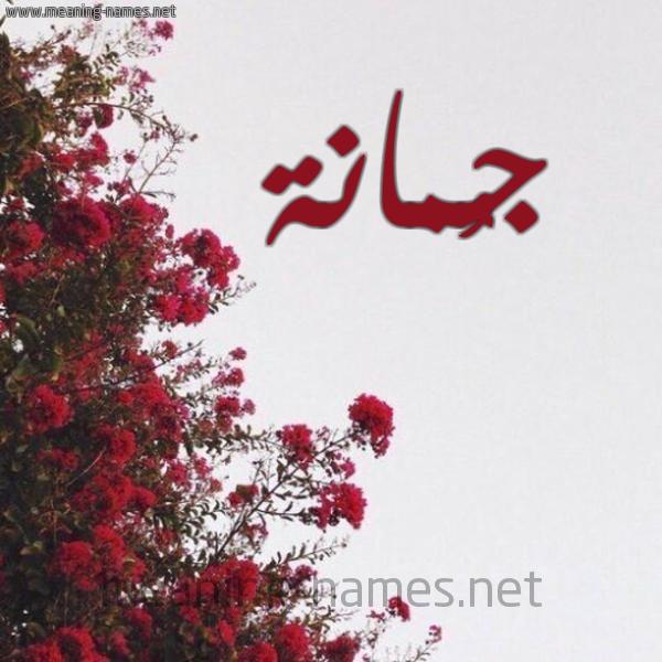 شكل 18 صوره الورد الأحمر للإسم بخط رقعة صورة اسم جُمانة GOMANH