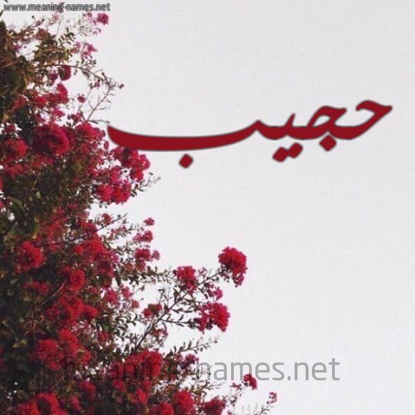 صورة اسم حجيب HAJIB شكل 18 صوره الورد الأحمر للإسم بخط رقعة