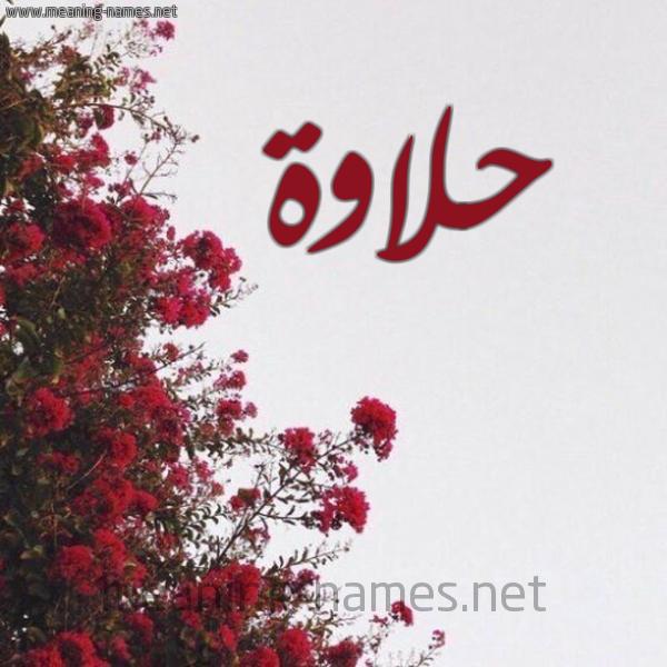 صورة اسم حلاوة HLAOH شكل 18 صوره الورد الأحمر للإسم بخط رقعة