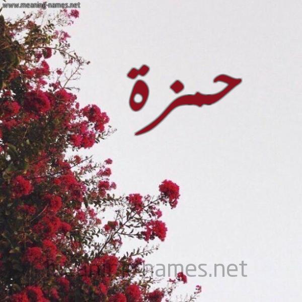 صورة اسم حمزة Hamza شكل 18 صوره الورد الأحمر للإسم بخط رقعة