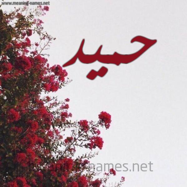 صورة اسم حميد Hmid شكل 18 صوره الورد الأحمر للإسم بخط رقعة