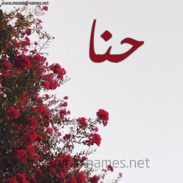 صورة اسم حنا HNA شكل 18 صوره الورد الأحمر للإسم بخط رقعة