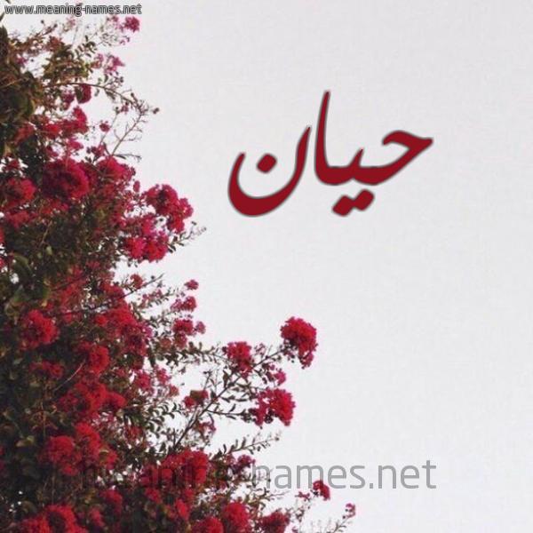 صورة اسم حيان Hian شكل 18 صوره الورد الأحمر للإسم بخط رقعة