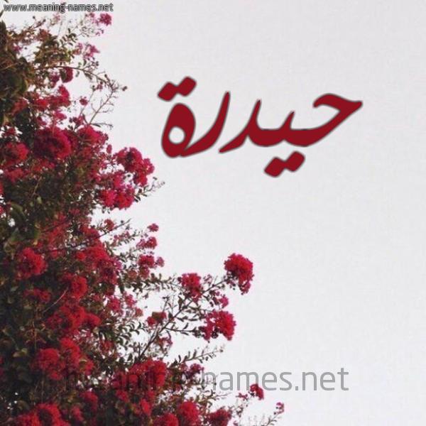 شكل 18 صوره الورد الأحمر للإسم بخط رقعة صورة اسم حيدرة Hidar