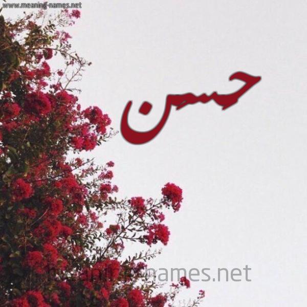 صورة اسم حَسَن HASAN شكل 18 صوره الورد الأحمر للإسم بخط رقعة