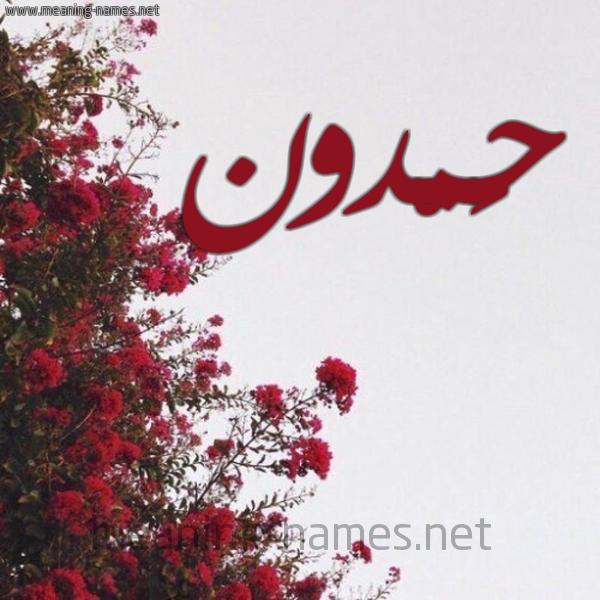 شكل 18 صوره الورد الأحمر للإسم بخط رقعة صورة اسم حَمْدون HAMDON