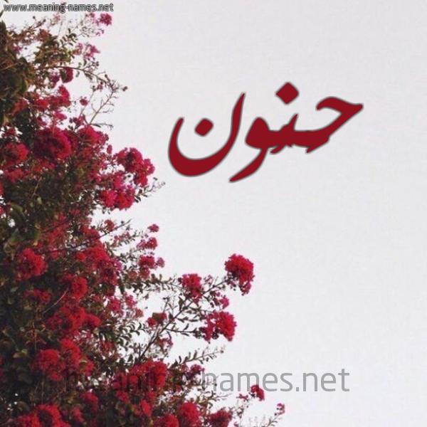 صورة اسم حَنُون HANOON شكل 18 صوره الورد الأحمر للإسم بخط رقعة