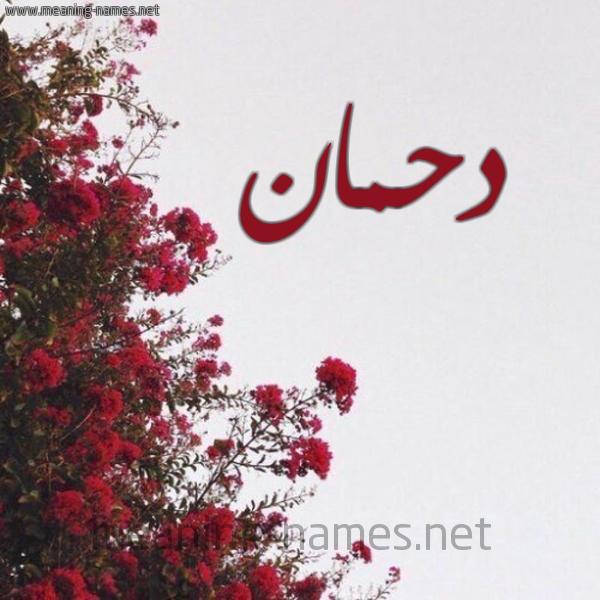 صورة اسم دحمان Dhman شكل 18 صوره الورد الأحمر للإسم بخط رقعة