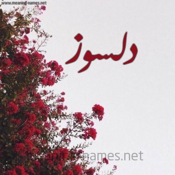 صورة اسم دلسوز Dlsoz شكل 18 صوره الورد الأحمر للإسم بخط رقعة