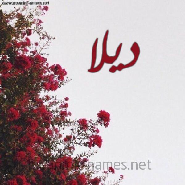 صور اسم ديلا قاموس الأسماء و المعاني