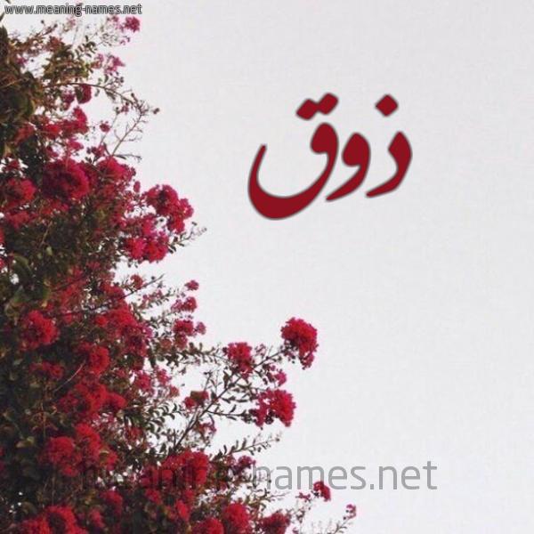 صورة اسم ذوق Dhwq شكل 18 صوره الورد الأحمر للإسم بخط رقعة