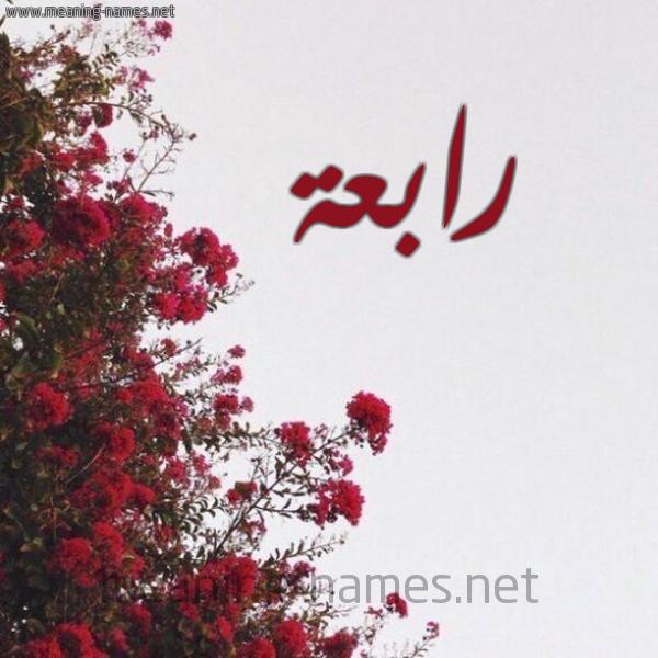 شكل 18 صوره الورد الأحمر للإسم بخط رقعة صورة اسم رابعة Rabaa