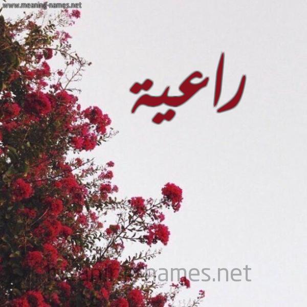 شكل 18 صوره الورد الأحمر للإسم بخط رقعة صورة اسم راعية RAAIH