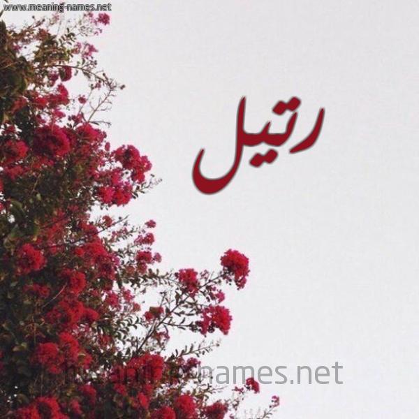 شكل 18 صوره الورد الأحمر للإسم بخط رقعة صورة اسم رتيل Rtyl