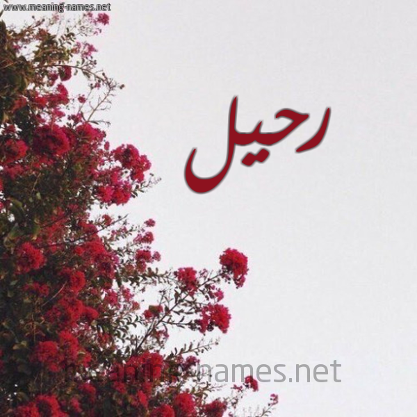 صورة اسم رحيل Rheel شكل 18 صوره الورد الأحمر للإسم بخط رقعة