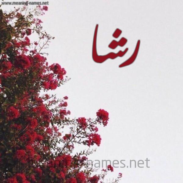 شكل 18 صوره الورد الأحمر للإسم بخط رقعة صورة اسم رشا Rsha