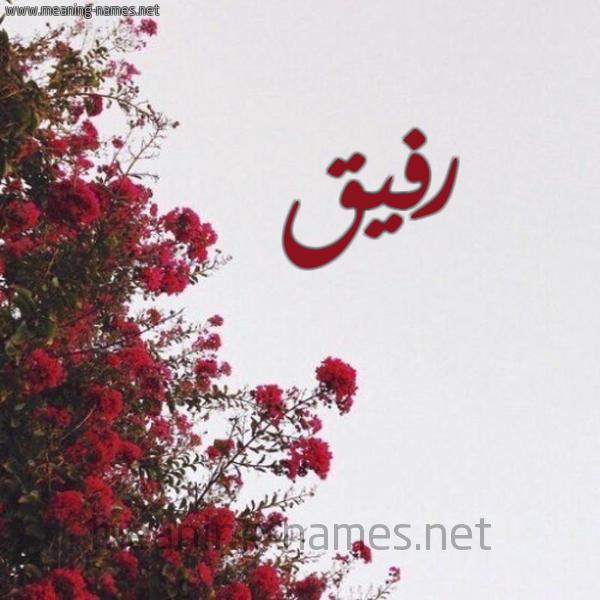 صورة اسم رفيق Rfyq شكل 18 صوره الورد الأحمر للإسم بخط رقعة